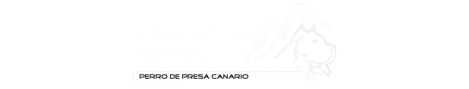 CarpatCan Presa Canario